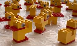 Lego-eendjes: geen standaard, veel variatie!