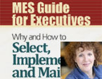 "Deel cover boek ""MES Guide for Executives"""